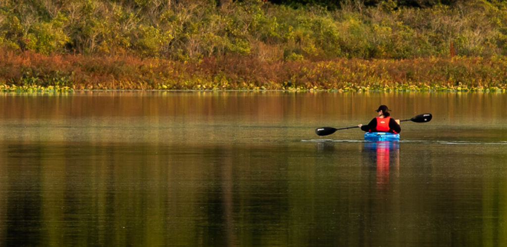 Two people kayaking on a clear day